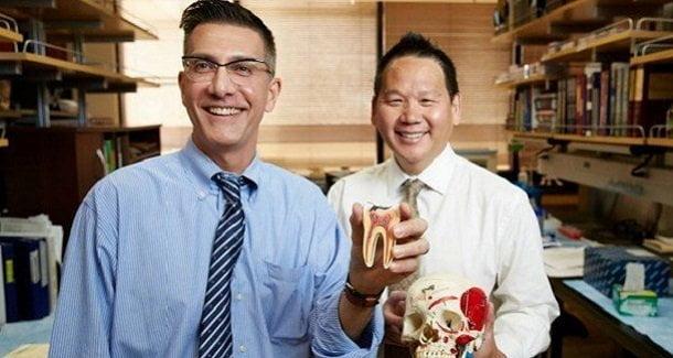Extraen células madre de terceros molares